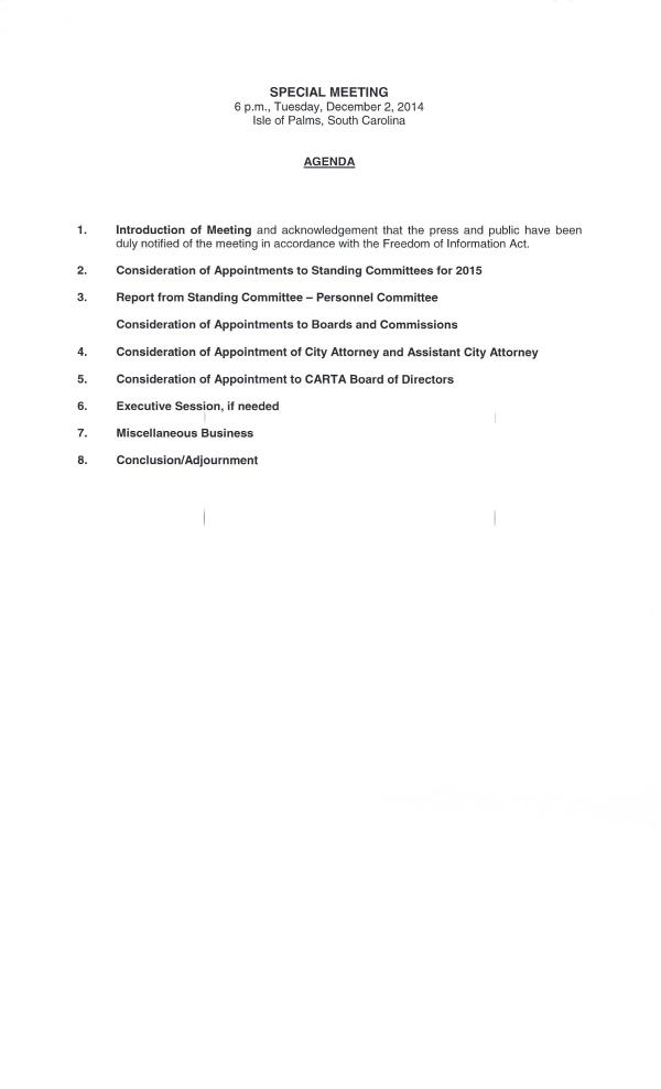 IOP special council meeting on committee appointments 12-2-14
