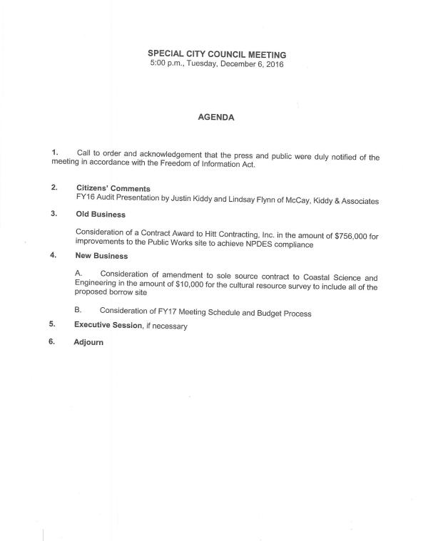 iop-special-council-meeting-for-fy16-audit